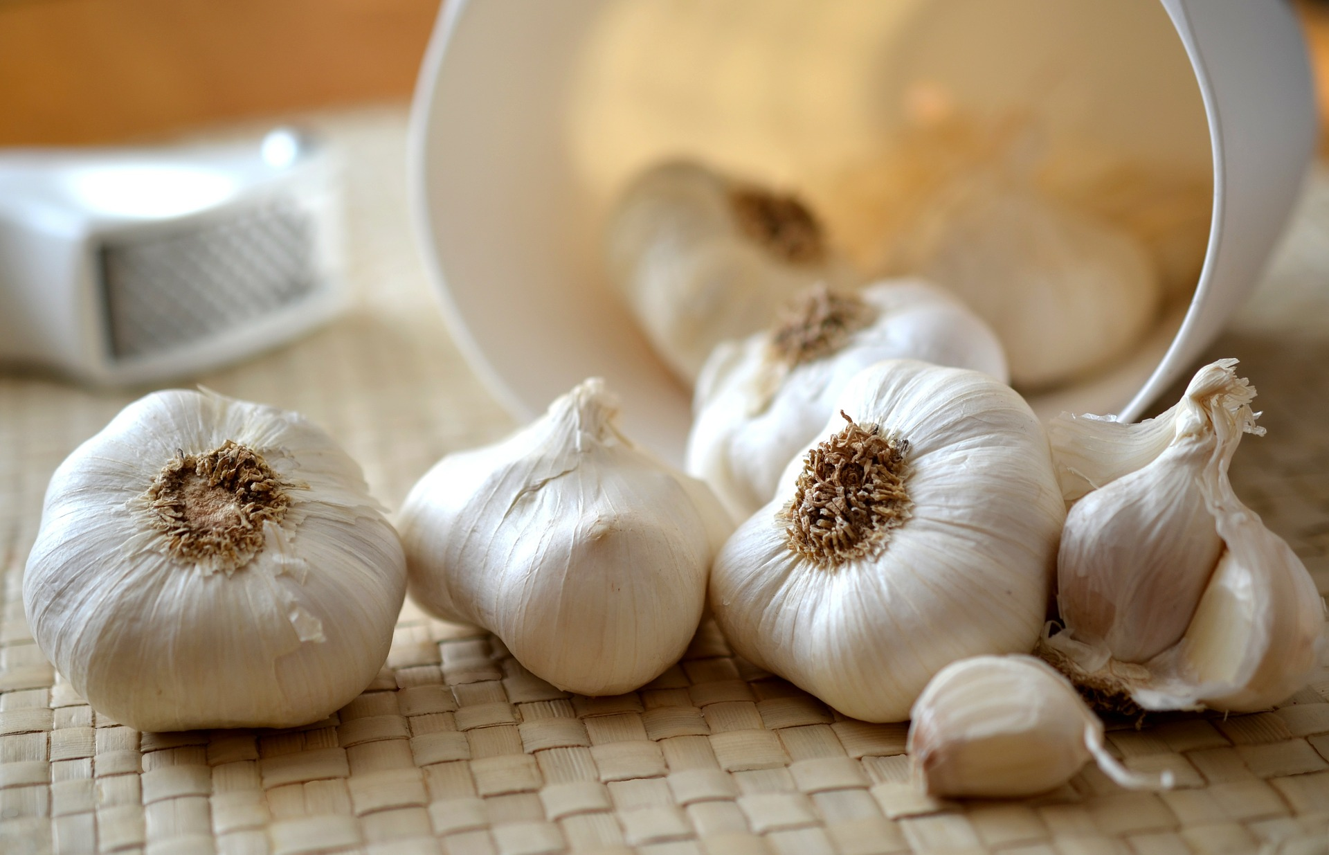Garlic blog header image