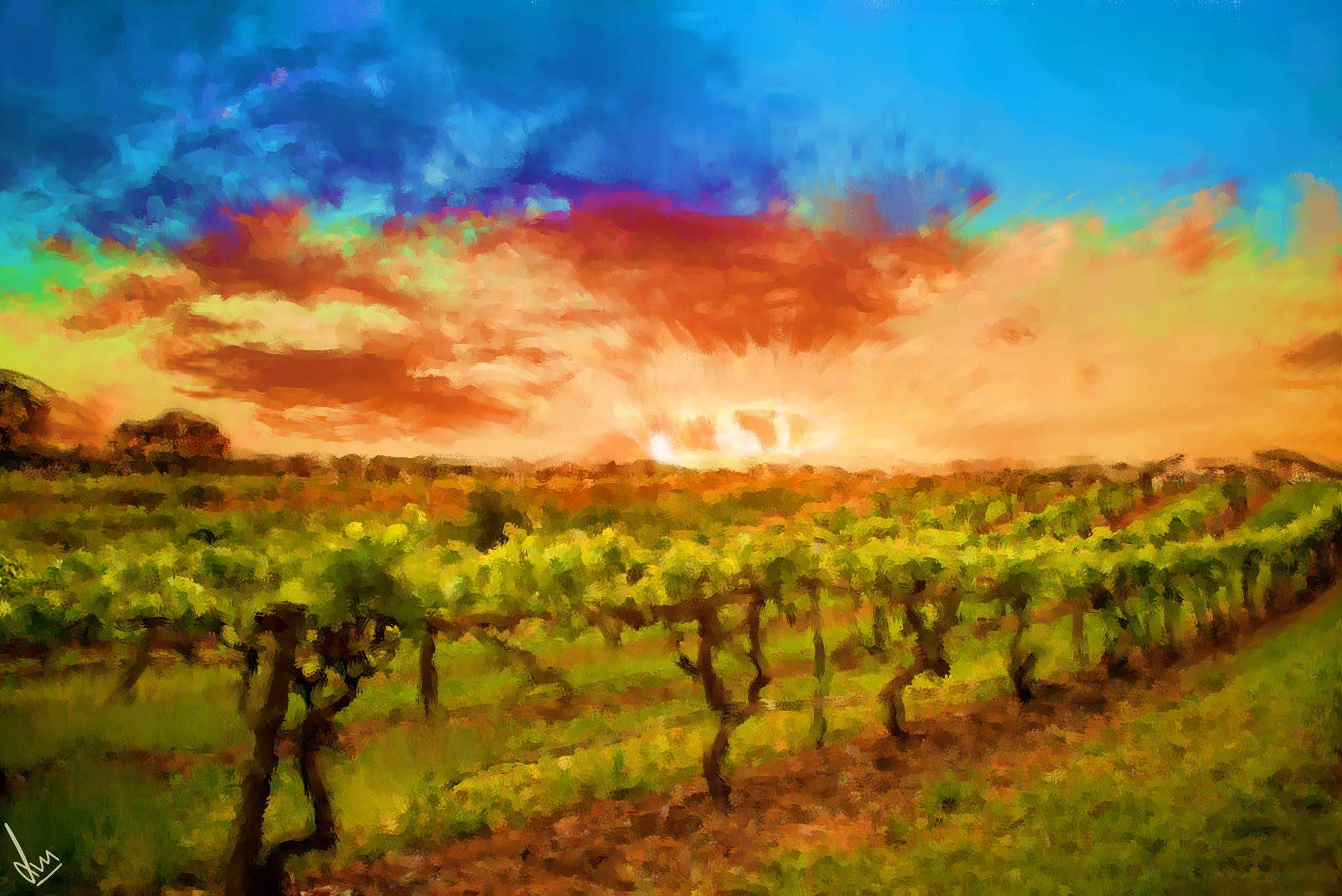 Vineyards of Barossa Valley, South Australia - Digital Painting by Shaalyn Monteiro